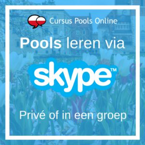 Pools leren via Skype